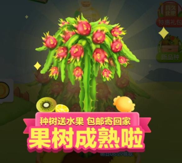拼多多种果树真的划算吗 为何拼多多种果树如此火?