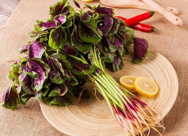 红苋菜和绿苋菜,哪种更好吃更有营养?