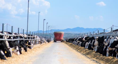 助力脱贫攻坚 蒙牛打造有竞争力的民族奶业—奶牛金钥匙技术示范蒙牛专场走进兴安盟