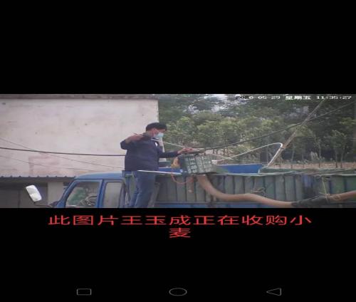 河南省唐河县邮政储蓄银行王玉成  长期不上班在外经商欺压村民此事谁来管?
