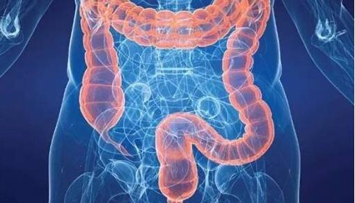 胃癌的早期症状是什么?得了胃癌还能治好吗