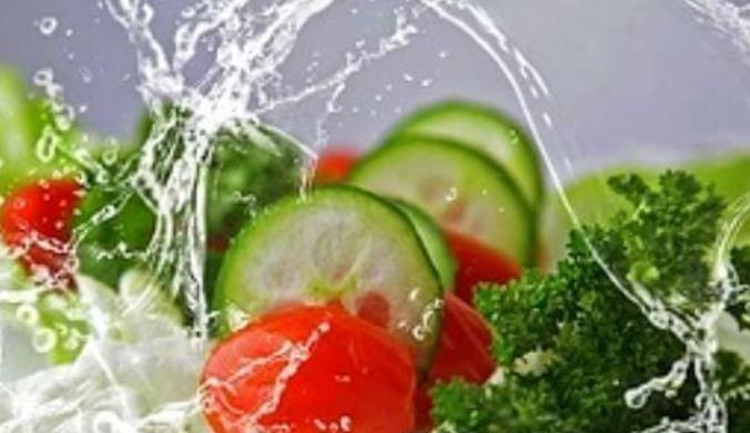 中医健康养生之道 调和气血平衡营养