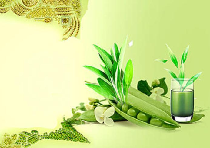 美好的生活需要健康的养生 可以促进消化增强免疫力