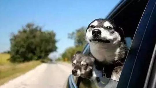 春季开车犯困怎么避免 开车容易犯困怎么办才好