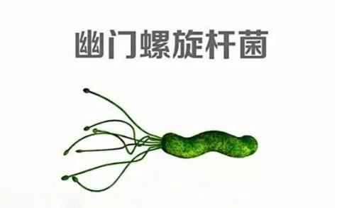 幽美螺旋杆菌容易传染吗?幽门螺旋杆菌是什么,感染后需要治疗吗?