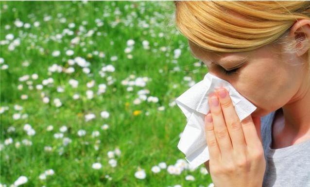 远离鲜花为何还会花粉过敏 过敏群体为何不断增多