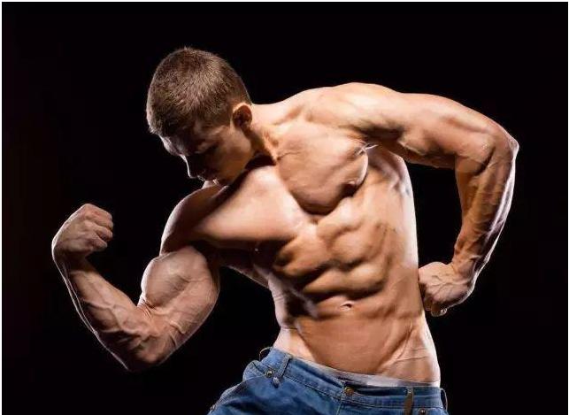 完整的胸肌训练:如何有效训的练胸部肌?新手胸肌训练指南