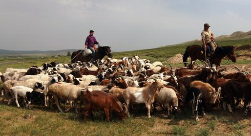 蒙古国境内的草原野火已被扑灭 为什么蒙古国老是出现草原野火