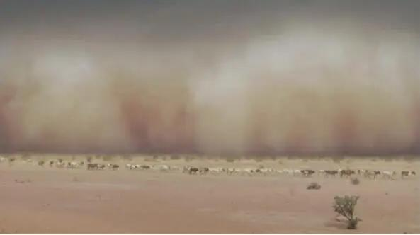 为何今年沙尘大风天气频发?今年沙尘大风天气频发的原因有哪些?