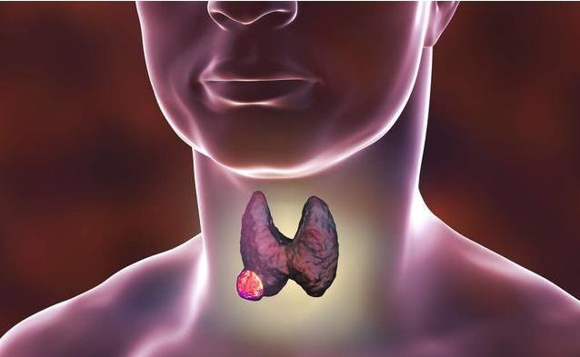 甲状腺到底对人体有多重要?甲状腺出问题后都有哪些异常?