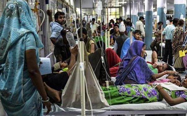 印度疫情是否会影响中国 李兰娟回应印度疫情是否会波及中国