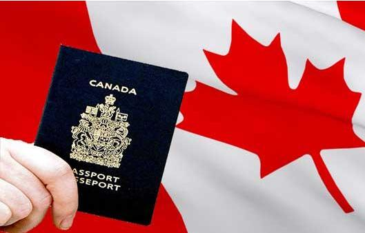 加拿大移民宣布疫情临时政策已终止是怎么回事?哪项疫情临时政策已终止?
