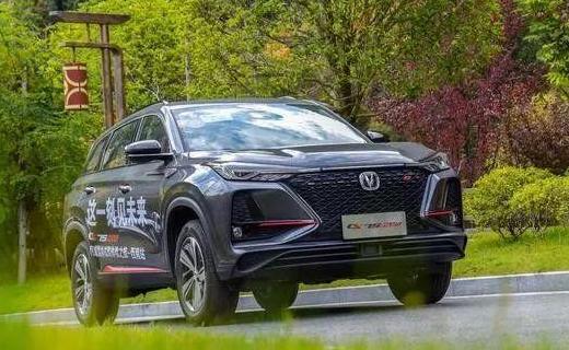 2021年自主品牌汽车销量情况如何 自主品牌汽车市场出现危机?