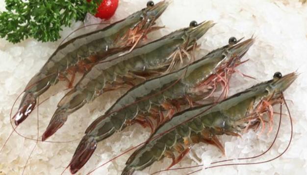 中国拒收1000个集装箱的印度虾,为何病毒总出现在冻品上?