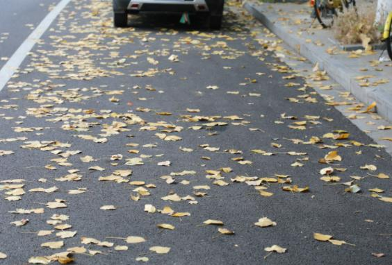 秋天驾驶要注意落叶堆积 落叶可能挡住路面异物从而损伤车辆