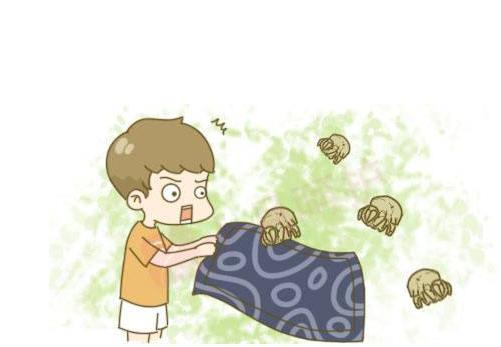 生活中螨虫几乎无处不在 教你如何对付螨虫!