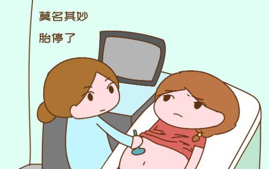 为什么会出现停胎的现象? 出现这些情况有可能是停胎了要及时检查