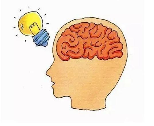 胎儿脑部发育黄金期是什么时候 胎儿脑部发育黄金期应该怎么补充营养