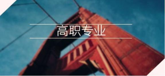 中国职业教育现状及问题分析,本科层次职业教育的现状如何?
