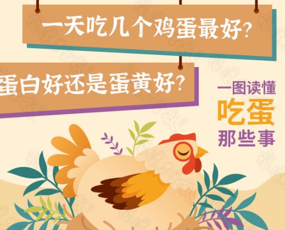 鸡蛋要天天吃吗?每天吃几个鸡蛋合适?怎么吃最有营养呢?