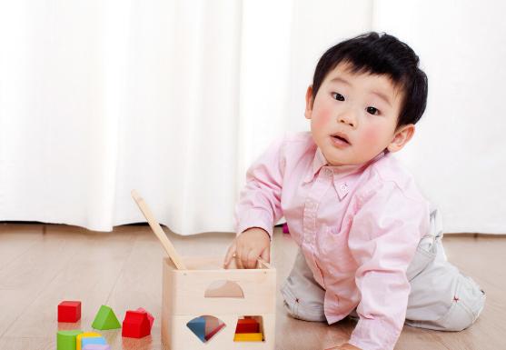 如何做早教才正确?早教方法是科学的,这对大脑发育来说,本身就是一种顺势而为