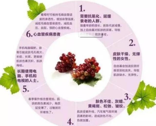 葡萄籽的作用与功效?葡萄籽的主要成分?