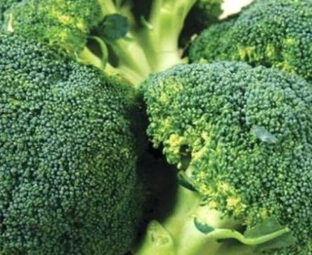 西蓝花中的营养成分? 西蓝花属于高纤维蔬菜,可促进胃肠的蠕动,帮助消化!