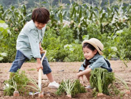 孩子的生活力:你会发现每个孩子都会有属于自己的生活力