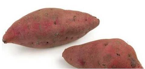 红薯发芽能吃吗?我们在食用红薯时的注意些什么?