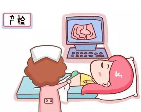 孕期重要检查项目及时间 怀孕必看!