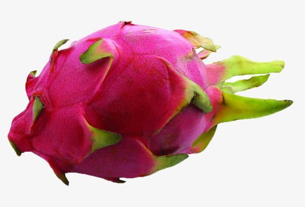 火龙果的功效和作用有哪些?火龙果最好不要和什么食物一起吃?