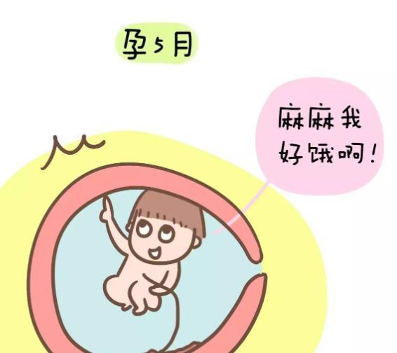 怀孕五个月应该补充什么营养?2021怀孕五个月的食谱推荐