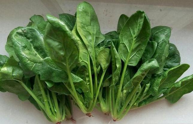 菠菜豆腐一起吃会中毒?菠菜中的草酸该如何处理?