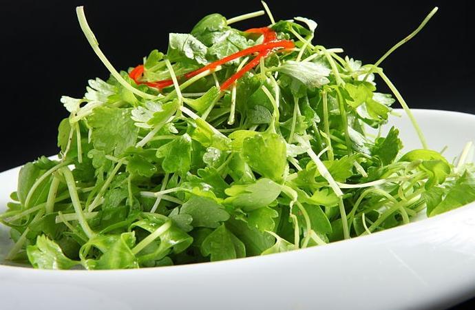 多吃香菜竟然可以对抗一些疾病?香菜既养生又功效多!!!