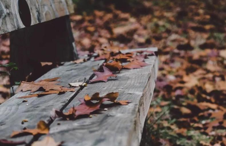 为什么秋冬季节的抑郁高发期?上班族该如何合理调节心态?