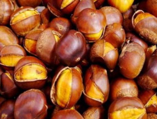 """板栗被称为""""秋果之王"""",常吃好处不请自来,你都了解吗?"""