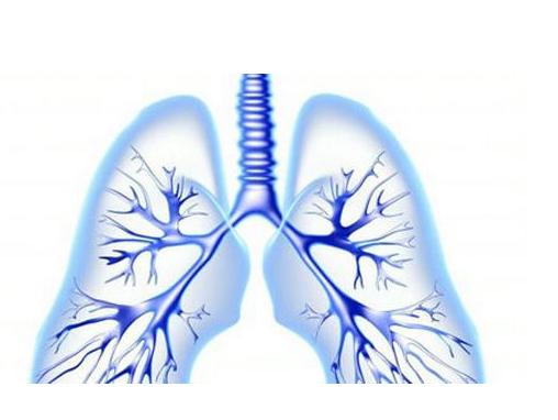冬季来临护好肺部很重要,中医教你健肺养肺保健功法,冬季少生病?