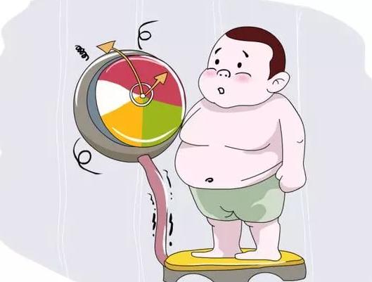 肥胖是万病之源,我们应该如何远离肥胖,远离肾结石?远离肾病?