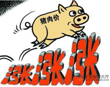 2020年疫情之后如何让猪肉价格恢复正常