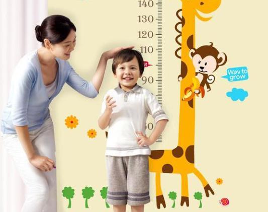 影响孩子长个的因素有哪些?怎么做能帮助孩子长高?