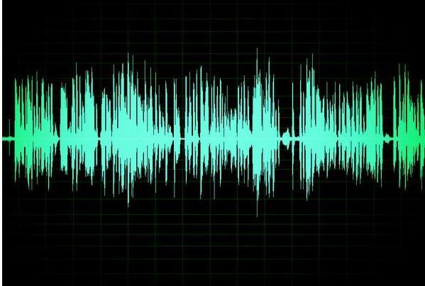 胎儿的结构是如何成形的?声音对无机物质有巨大的影响