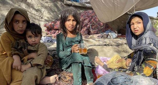 5分钟了解阿富汗女性生存状况 她们能否获得更多权力?