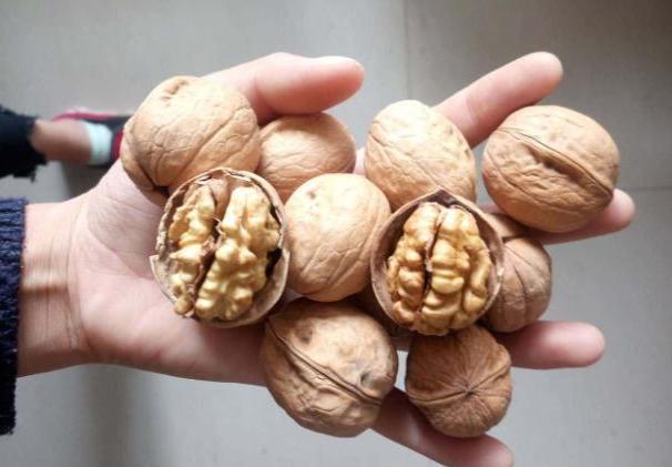 胎儿智力发育三个黄金周 孕妇多吃这些食物孩子更聪明