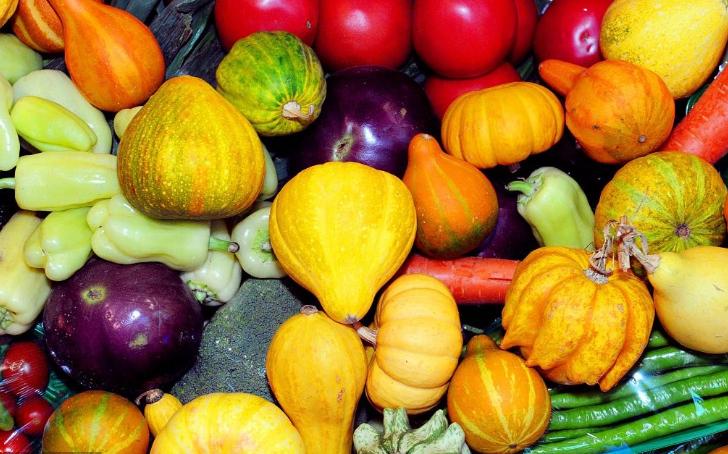 能量充足 食物多样 新冠肺炎防治营养膳食指导发布